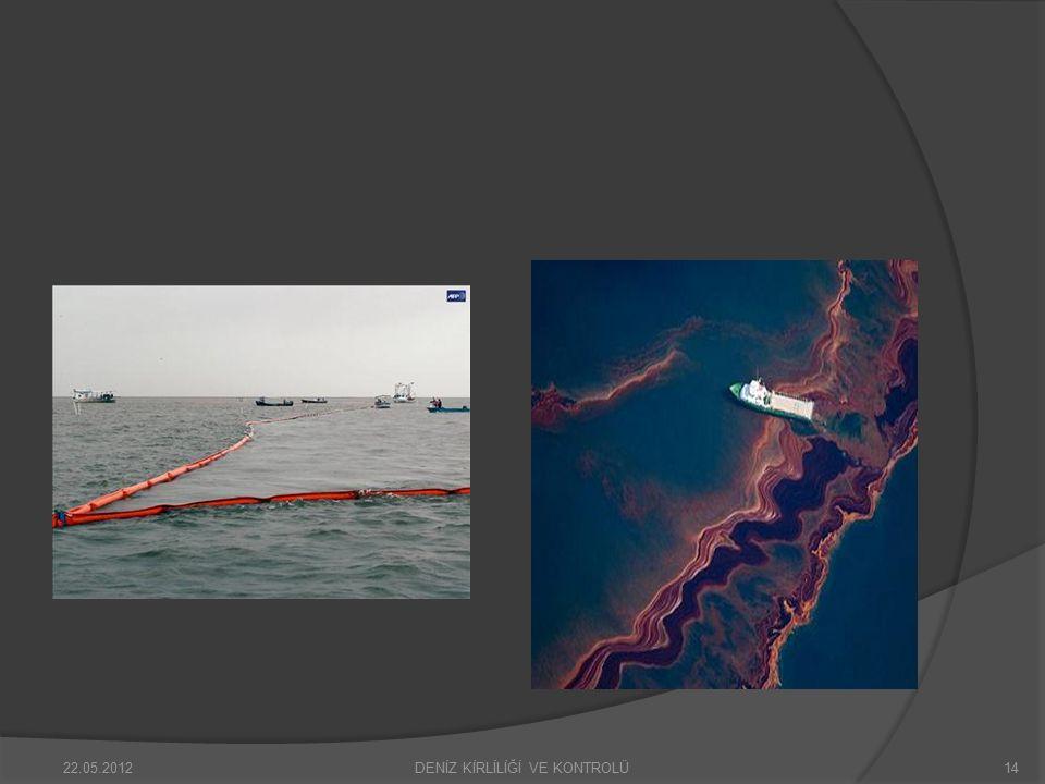 Türkiye Boğazlarındaki gemi trafiğinden kaynaklı çevre kirliliği bazı yönetmelik ve yürürlüklerle yasal hale getirilerek düzenlemekte, fakat hala çevre konusunda duyarlılık edinemeyen firmalar ve gemi kaptanları deniz ekosistemini tehlikeye atarak deniz üzerindeki seyirlerini sürdürmektedir.