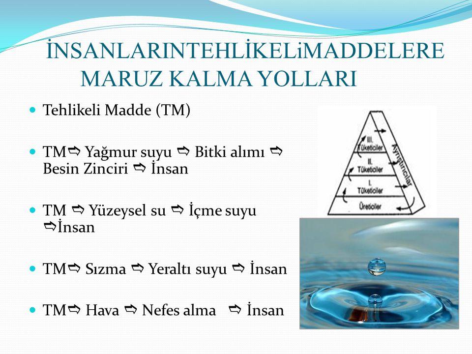 İNSANLARINTEHLİKELiMADDELERE MARUZ KALMA YOLLARI Tehlikeli Madde (TM) TM  Yağmur suyu  Bitki alımı  Besin Zinciri  İnsan TM  Yüzeysel su  İçme s