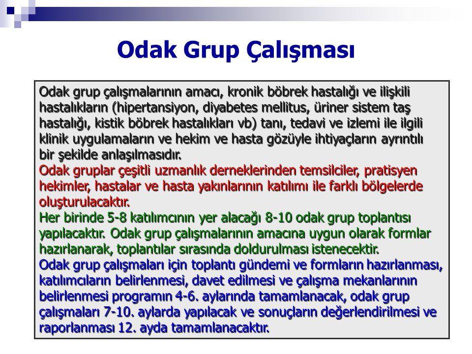 Odak Grup Çalışması Odak grup çalışmalarının amacı, kronik böbrek hastalığı ve ilişkili hastalıkların (hipertansiyon, diyabetes mellitus, üriner siste