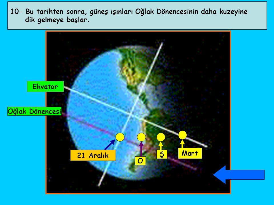 10- Bu tarihten sonra, güneş ışınları Oğlak Dönencesinin daha kuzeyine dik gelmeye başlar. Oğlak Dönencesi Ekvator 21 Aralık O Ş Mart