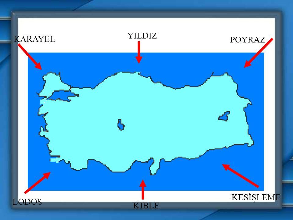 I.Mistral II.Bora III.Hamsin IV.Fön Yukarıdaki yerel rüzgarlardan hangileri, estikleri yerlerde havanın soğumasına neden olurlar? A) I ve IIB) I ve II