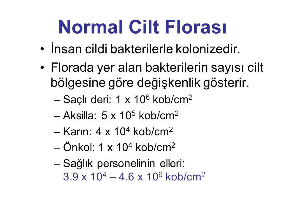 GEÇİCİ FLORA KALICI FLORA GEÇİCİ FLORA; elemanları cildin yüzeyel kısmına kolonize olur ve uzaklaştırılabilir.