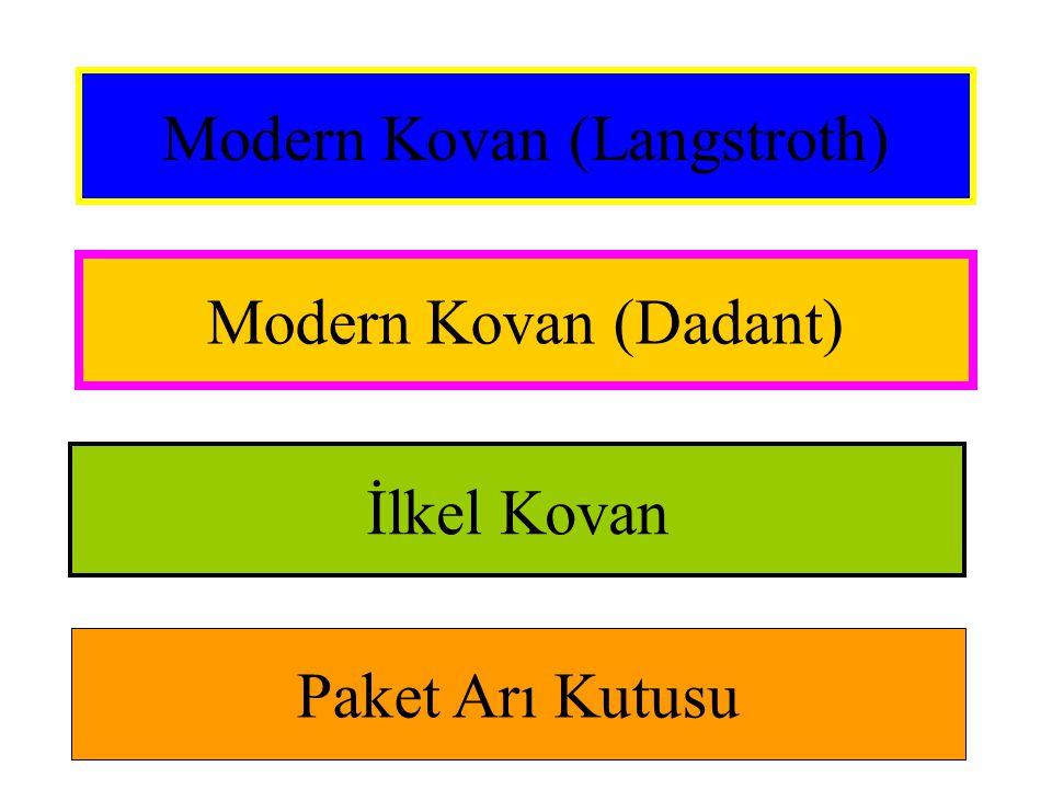 Modern Kovan (Langstroth) Modern Kovan (Dadant) İlkel Kovan Paket Arı Kutusu