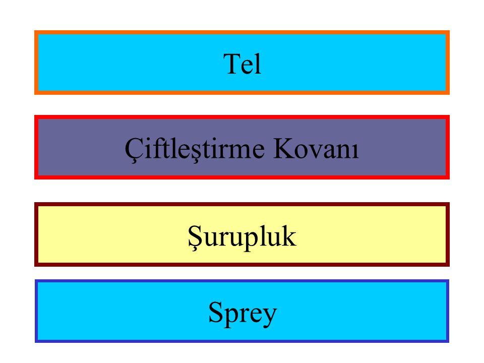 Tel Şurupluk Sprey Çiftleştirme Kovanı