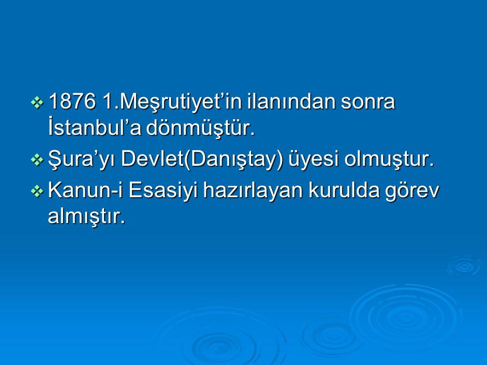  1876 1.Meşrutiyet'in ilanından sonra İstanbul'a dönmüştür.  Şura'yı Devlet(Danıştay) üyesi olmuştur.  Kanun-i Esasiyi hazırlayan kurulda görev alm