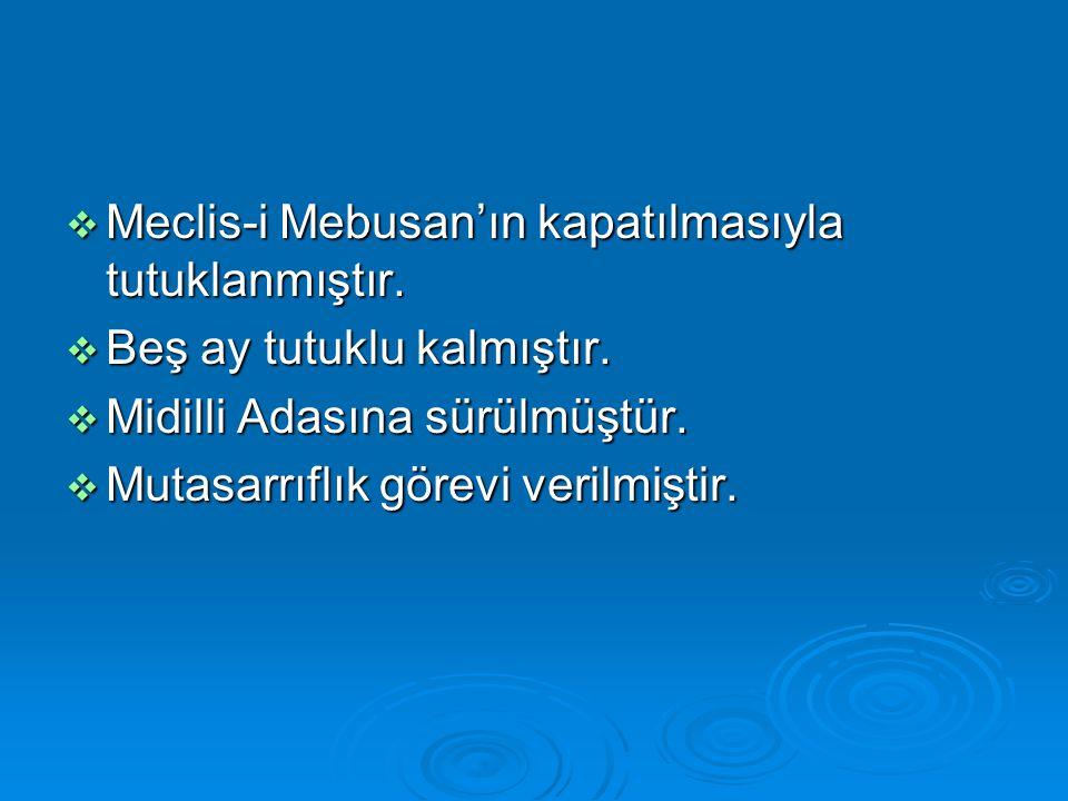  Meclis-i Mebusan'ın kapatılmasıyla tutuklanmıştır.  Beş ay tutuklu kalmıştır.  Midilli Adasına sürülmüştür.  Mutasarrıflık görevi verilmiştir.