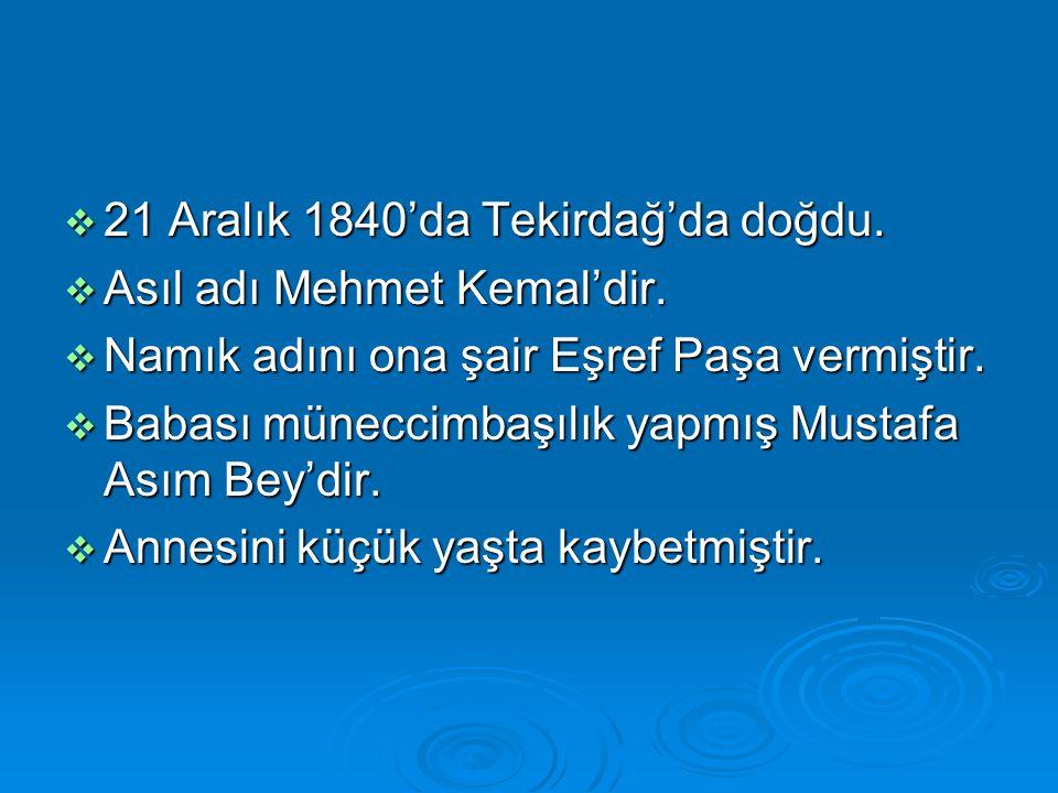  21 Aralık 1840'da Tekirdağ'da doğdu.  Asıl adı Mehmet Kemal'dir.  Namık adını ona şair Eşref Paşa vermiştir.  Babası müneccimbaşılık yapmış Musta