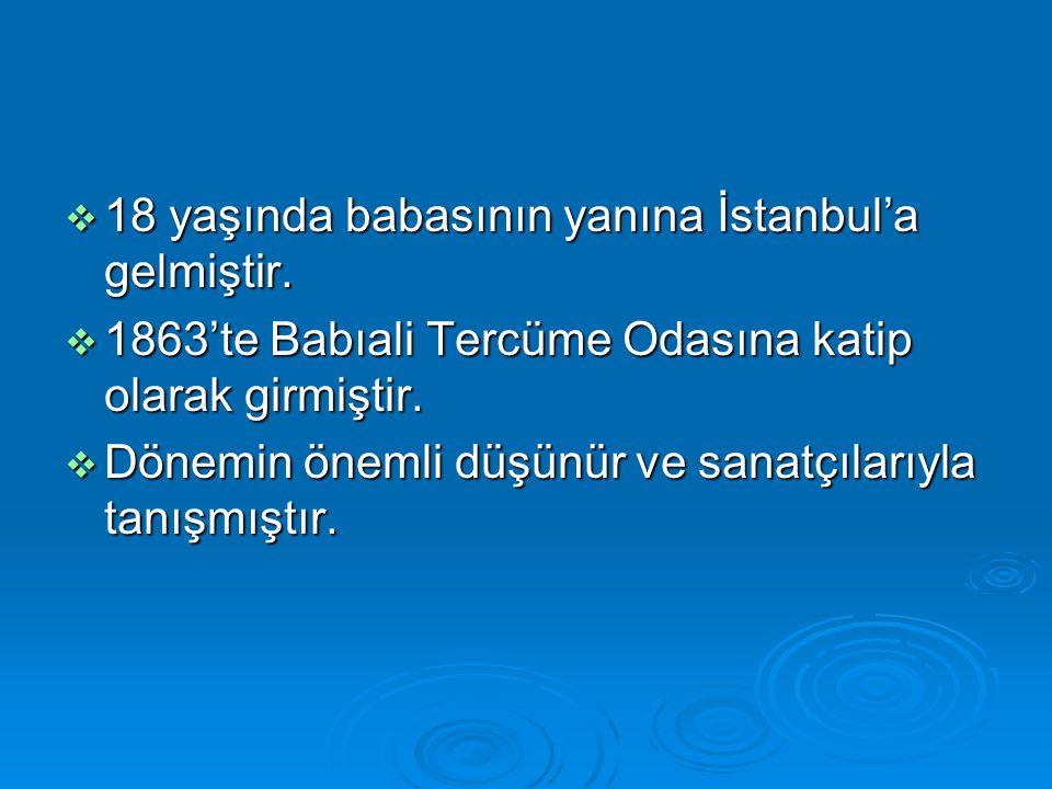  18 yaşında babasının yanına İstanbul'a gelmiştir.  1863'te Babıali Tercüme Odasına katip olarak girmiştir.  Dönemin önemli düşünür ve sanatçılarıy