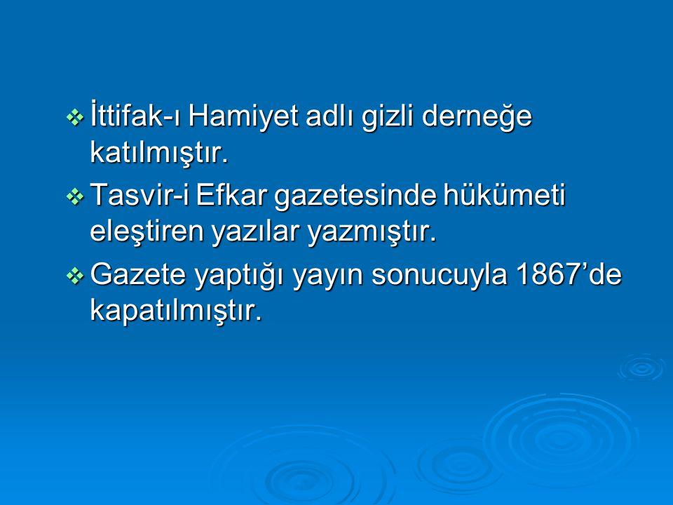  İttifak-ı Hamiyet adlı gizli derneğe katılmıştır.  Tasvir-i Efkar gazetesinde hükümeti eleştiren yazılar yazmıştır.  Gazete yaptığı yayın sonucuyl