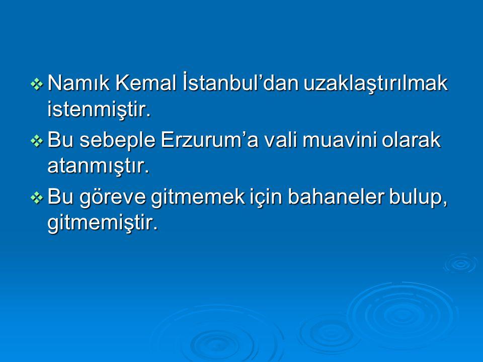  Namık Kemal İstanbul'dan uzaklaştırılmak istenmiştir.  Bu sebeple Erzurum'a vali muavini olarak atanmıştır.  Bu göreve gitmemek için bahaneler bul