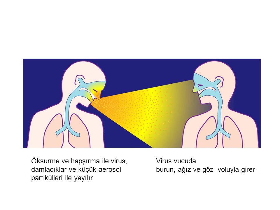 İnfluenza Çok Bulaşıcıdır Öksürme ve hapşırma ile virüs, damlacıklar ve küçük aerosol partikülleri ile yayılır Virüs vücuda burun, ağız ve göz yoluyla girer