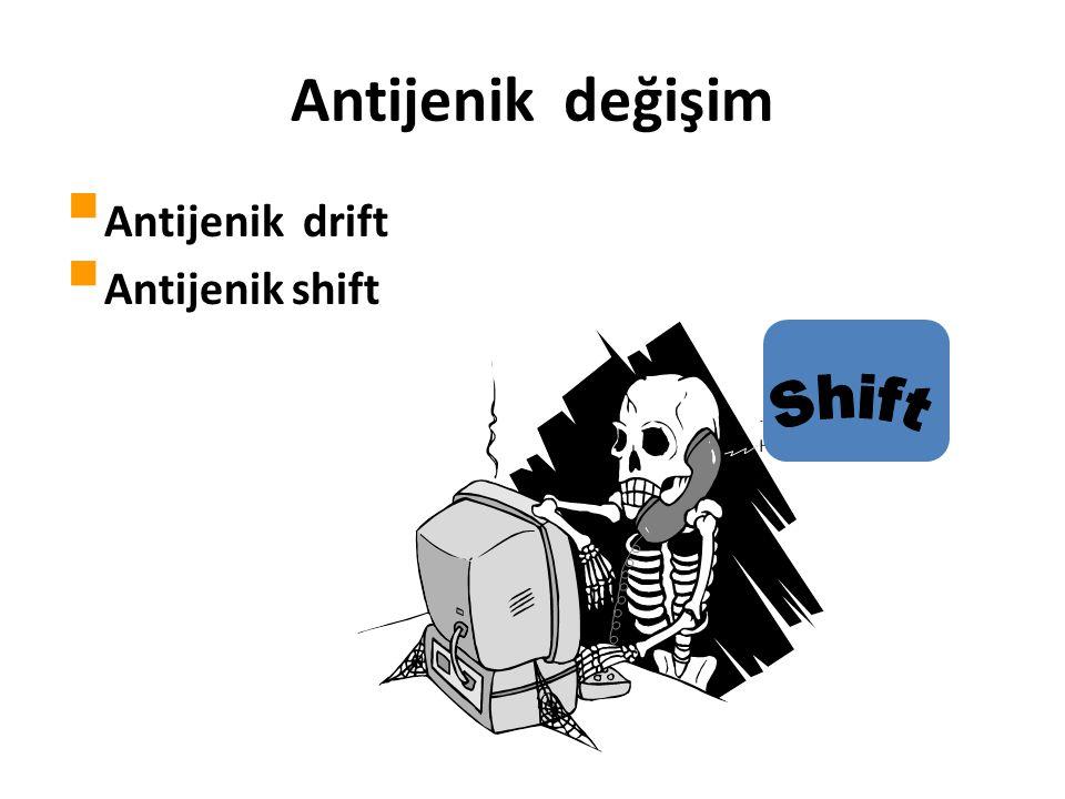 Antijenik değişim  Antijenik drift  Antijenik shift