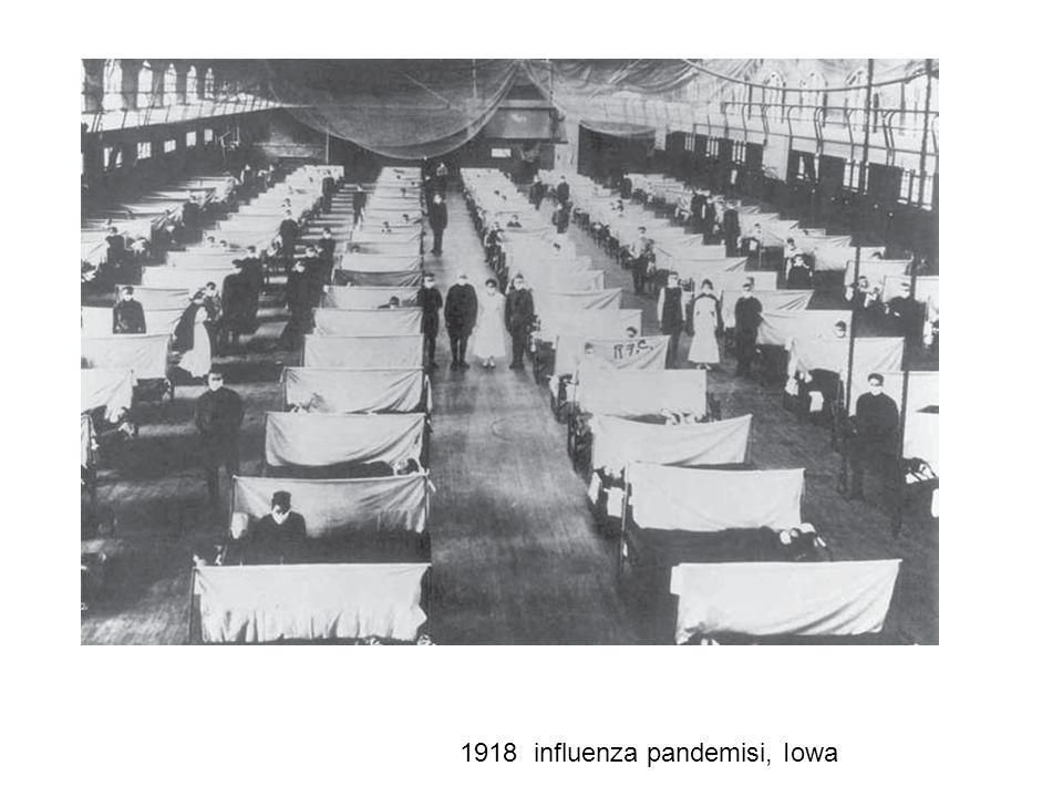 DSÖ Verileri-1998 Ölüm: 54 milyon İnfeksiyona bağlı ölüm: 13 milyon Pnömoni: 3,5 milyon AIDS: 2,3 milyon İshal: 2,2 milyon Tüberküloz: 1,5 milyon Sıtma: 1,1 milyon Kızamık: 1 milyon Grip: 300 bin * *