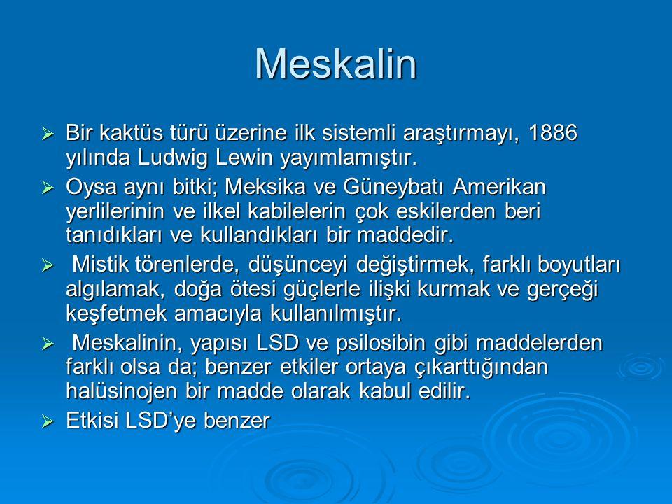 Meskalin  Bir kaktüs türü üzerine ilk sistemli araştırmayı, 1886 yılında Ludwig Lewin yayımlamıştır.