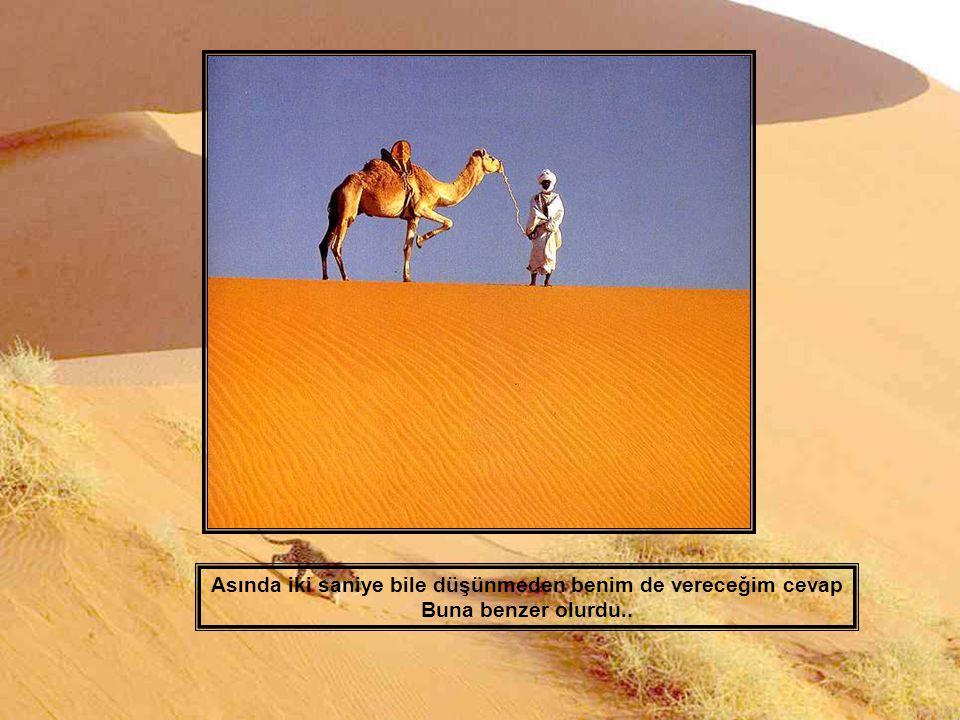 """Eğer sizlere : « Sahara sözcüğü sizin için ne ifade ediyor ? » diye sorsam, Öyle sanıyorum ki bana : « Kum…kum…kum…sadece kum yığını"""" Diye cevap verir"""