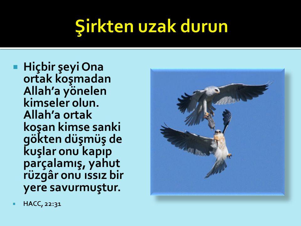  Hiçbir şeyi Ona ortak koşmadan Allah'a yönelen kimseler olun. Allah'a ortak koşan kimse sanki gökten düşmüş de kuşlar onu kapıp parçalamış, yahut rü