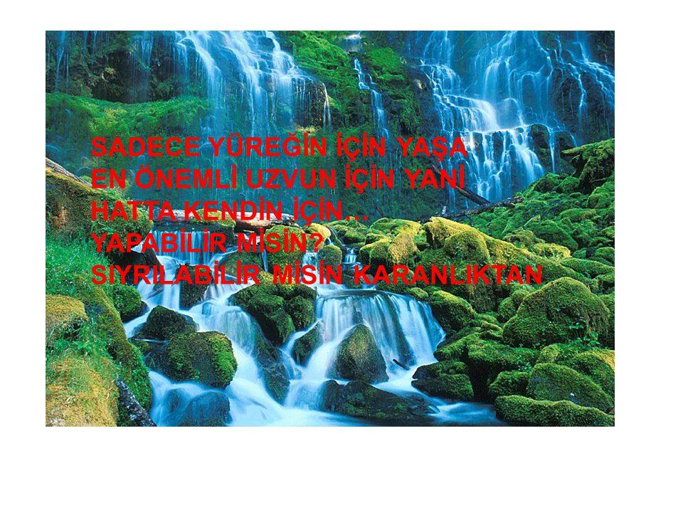 SADECE YÜREĞİN İÇİN YAŞA EN ÖNEMLİ UZVUN İÇİN YANİ HATTA KENDİN İÇİN… YAPABİLİR MİSİN? SIYRILABİLİR MİSİN KARANLIKTAN …