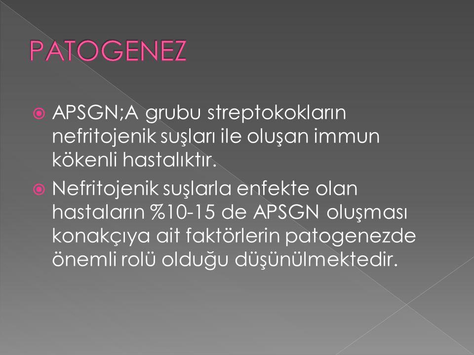  APSGN;A grubu streptokokların nefritojenik suşları ile oluşan immun kökenli hastalıktır.  Nefritojenik suşlarla enfekte olan hastaların %10-15 de A