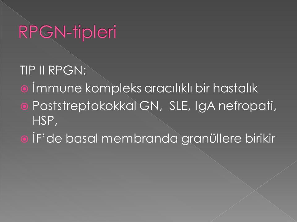 TIP II RPGN:  İmmune kompleks aracılıklı bir hastalık  Poststreptokokkal GN, SLE, IgA nefropati, HSP,  İF'de basal membranda granüllere birikir