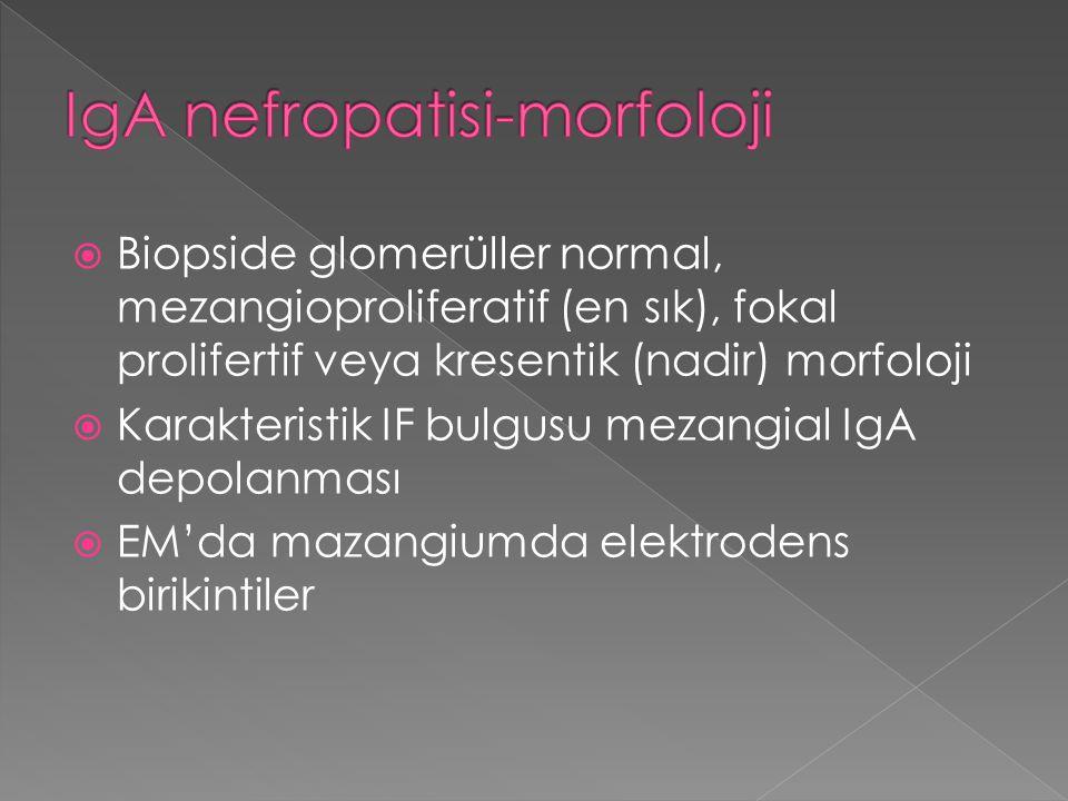  Biopside glomerüller normal, mezangioproliferatif (en sık), fokal prolifertif veya kresentik (nadir) morfoloji  Karakteristik IF bulgusu mezangial