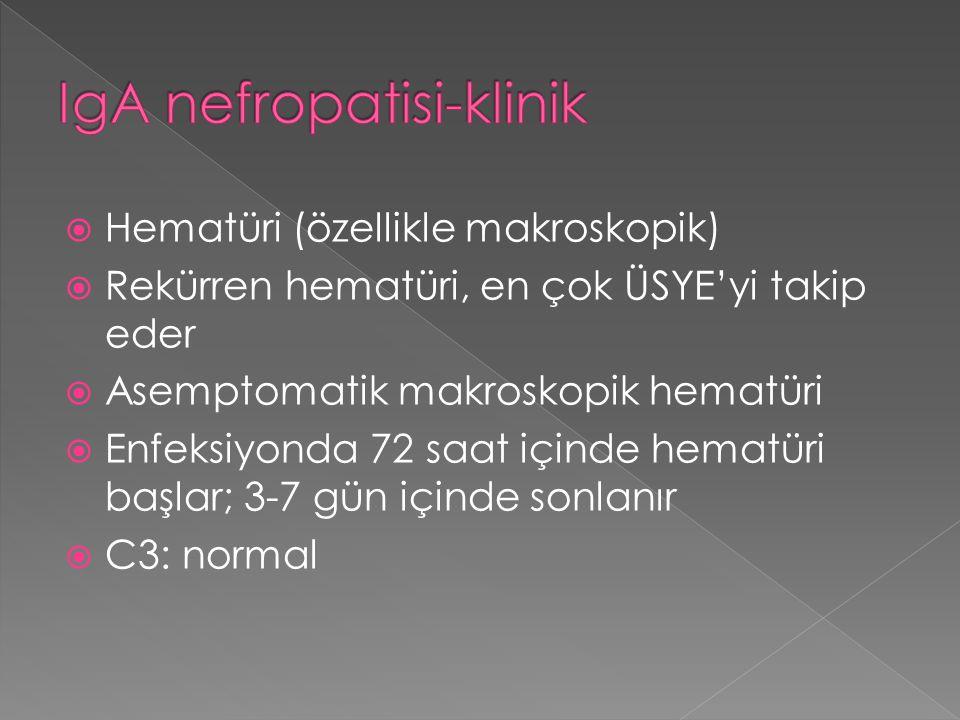  Hematüri (özellikle makroskopik)  Rekürren hematüri, en çok ÜSYE'yi takip eder  Asemptomatik makroskopik hematüri  Enfeksiyonda 72 saat içinde he