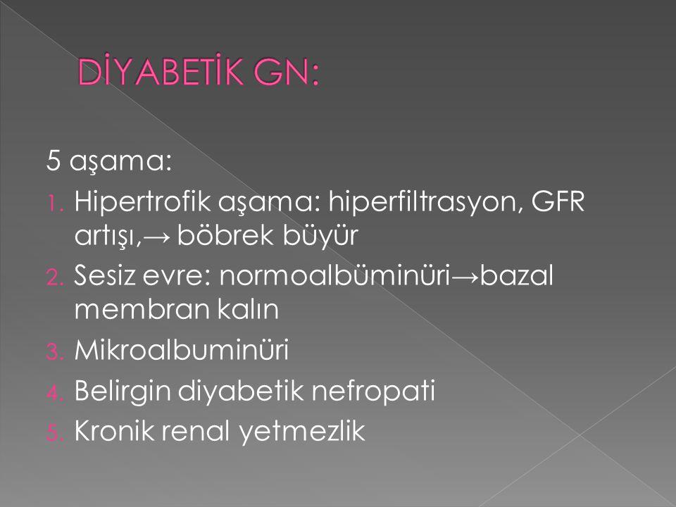 5 aşama: 1. Hipertrofik aşama: hiperfiltrasyon, GFR artışı,→ böbrek büyür 2. Sesiz evre: normoalbüminüri→bazal membran kalın 3. Mikroalbuminüri 4. Bel