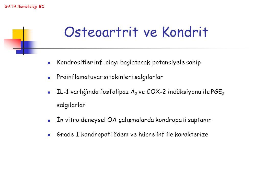 GATA Romatoloji BD Osteoartrit ve Kondrit Kondrositler inf.