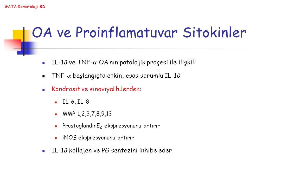 GATA Romatoloji BD OA ve Proinflamatuvar Sitokinler IL-1  ve TNF-  OA'nın patolojik proçesi ile ilişkili TNF-  başlangıçta etkin, esas sorumlu IL-1  Kondrosit ve sinoviyal h.lerden: IL-6, IL-8 MMP-1,2,3,7,8,9,13 ProstoglandinE 2 ekspresyonunu artırır iNOS ekspresyonunu artırır IL-1  kollajen ve PG sentezini inhibe eder