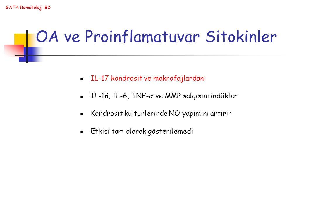 GATA Romatoloji BD OA ve Proinflamatuvar Sitokinler IL-17 kondrosit ve makrofajlardan: IL-1 , IL-6, TNF-  ve MMP salgısını indükler Kondrosit kültürlerinde NO yapımını artırır Etkisi tam olarak gösterilemedi