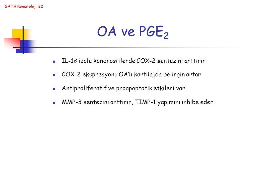 GATA Romatoloji BD OA ve PGE 2 IL-1  izole kondrositlerde COX-2 sentezini arttırır COX-2 ekspresyonu OA'lı kartilajda belirgin artar Antiproliferatif ve proapoptotik etkileri var MMP-3 sentezini arttırır, TIMP-1 yapımını inhibe eder