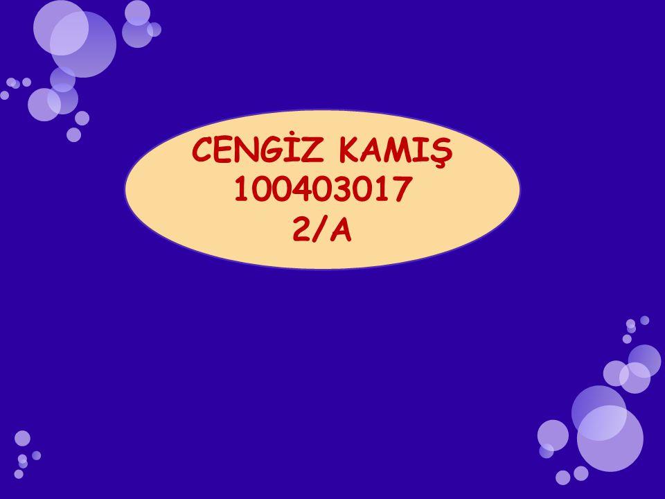 CENGİZ KAMIŞ 100403017 2/A