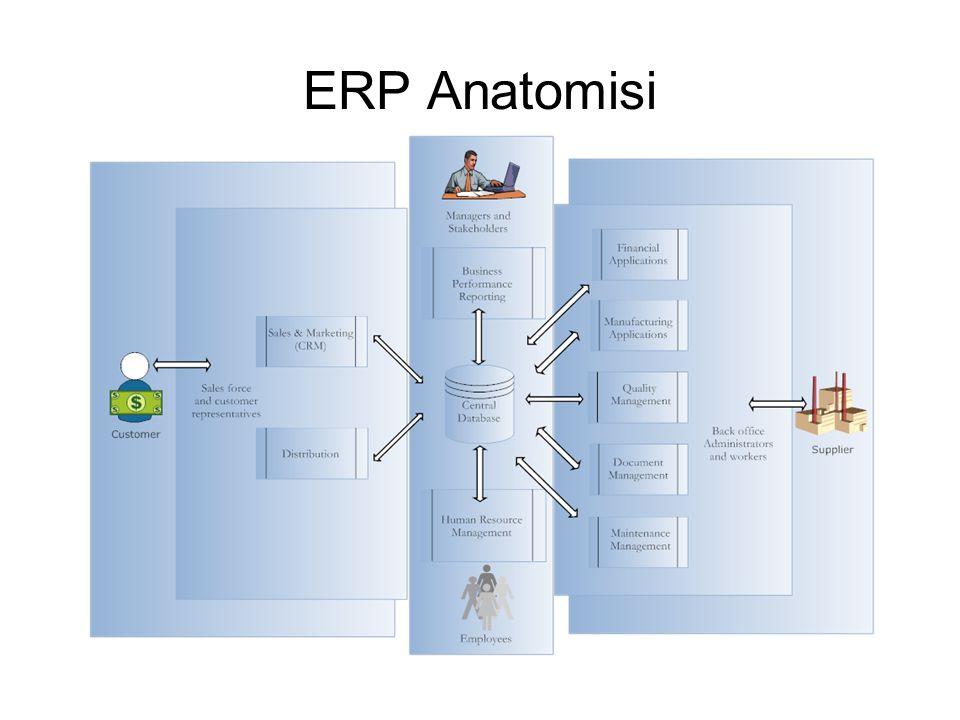 ERP Anatomisi