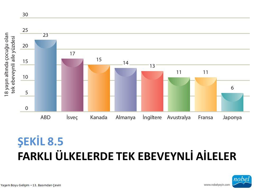 ŞEKİL 8.5 FARKLI ÜLKELERDE TEK EBEVEYNLİ AİLELER