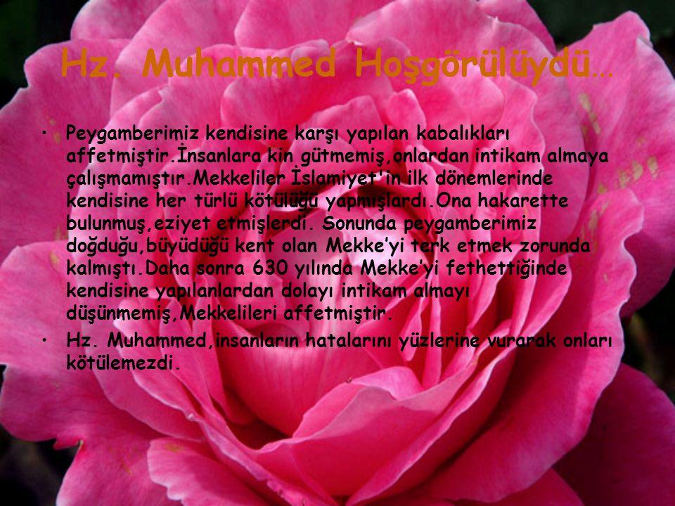 Hz. Muhammed Hoşgörülüydü… Peygamberimiz kendisine karşı yapılan kabalıkları affetmiştir.İnsanlara kin gütmemiş,onlardan intikam almaya çalışmamıştır.