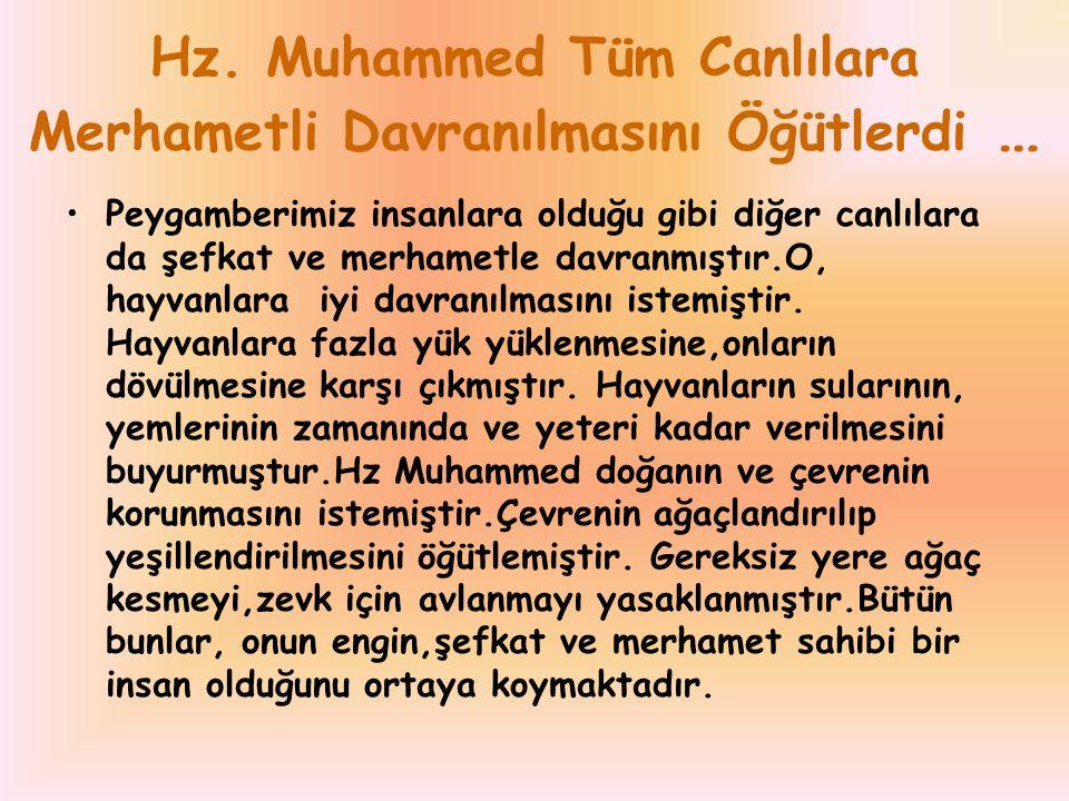 Hz. Muhammed Tüm Canlılara Merhametli Davranılmasını Öğütlerdi … Peygamberimiz insanlara olduğu gibi diğer canlılara da şefkat ve merhametle davranmış