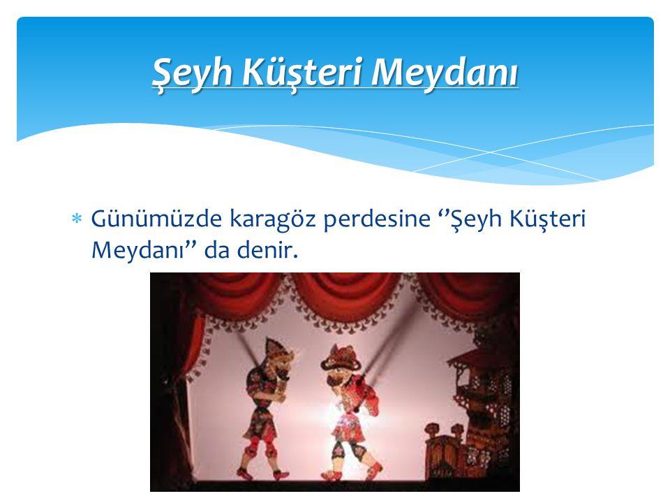  Kurucusu Şeyh Küşteri kabul edilse de kayıtlar Yavuz Sultan Selim'in Mısır'ı fethetmesiyle 16.yy da Mısırlı gölge oyuncularını davet etmesiyle bu oyunların bizde sergilenmeye başladığını gö s terir.17 yy ise oyun kesin biçimini almıştır.