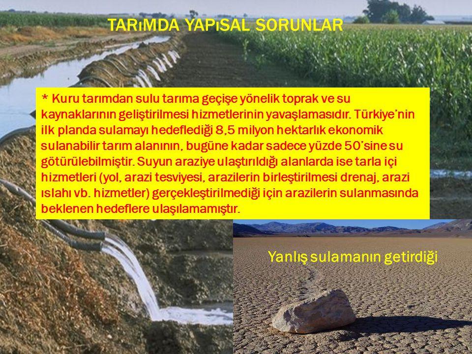 TARıMDA YAPıSAL SORUNLAR Yanlış sulamanın getirdiği * Kuru tarımdan sulu tarıma geçişe yönelik toprak ve su kaynaklarının geliştirilmesi hizmetlerinin