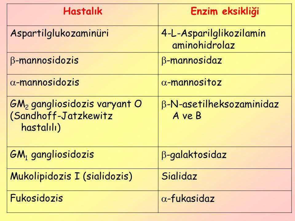 HastalıkEnzim eksikliği Aspartilglukozaminüri4-L-Asparilglikozilamin aminohidrolaz  -mannosidozis  -mannosidaz  -mannosidozis  -mannositoz GM 2 ga