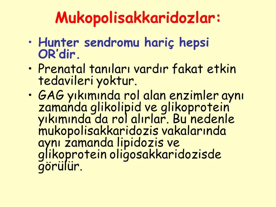 Mukopolisakkaridozlar: Hunter sendromu hariç hepsi OR'dir. Prenatal tanıları vardır fakat etkin tedavileri yoktur. GAG yıkımında rol alan enzimler ayn