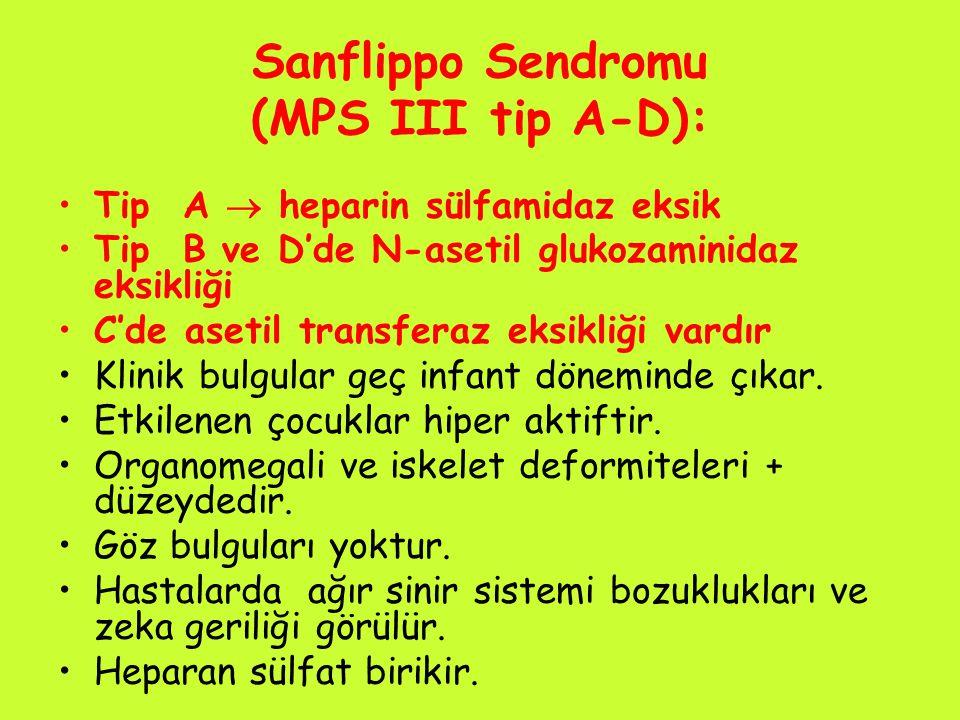 Sanflippo Sendromu (MPS III tip A-D): Tip A  heparin sülfamidaz eksik Tip B ve D'de N-asetil glukozaminidaz eksikliği C'de asetil transferaz eksikliğ