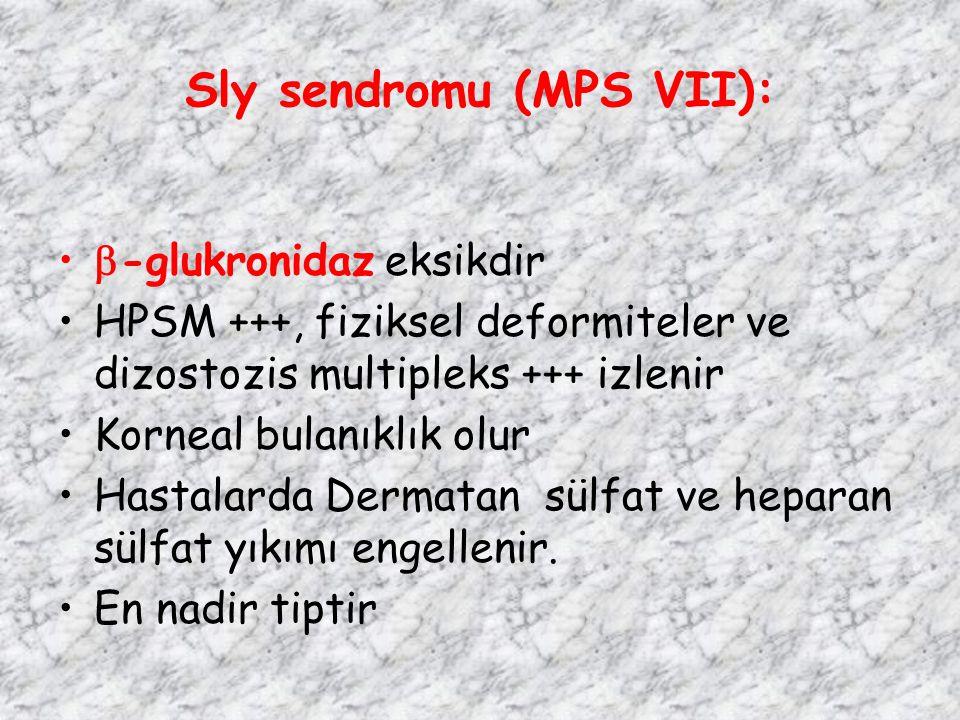 Sly sendromu (MPS VII):  -glukronidaz eksikdir HPSM +++, fiziksel deformiteler ve dizostozis multipleks +++ izlenir Korneal bulanıklık olur Hastalard