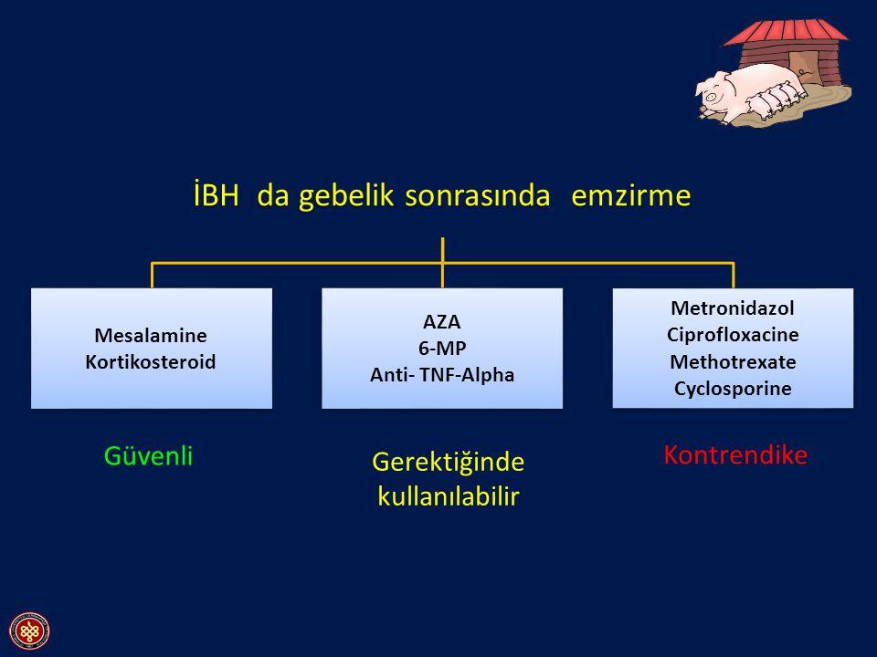 İBH da gebelik sonrasında emzirme Mesalamine Kortikosteroid AZA 6-MP Anti- TNF-Alpha Metronidazol Ciprofloxacine Methotrexate Cyclosporine Güvenli Ger