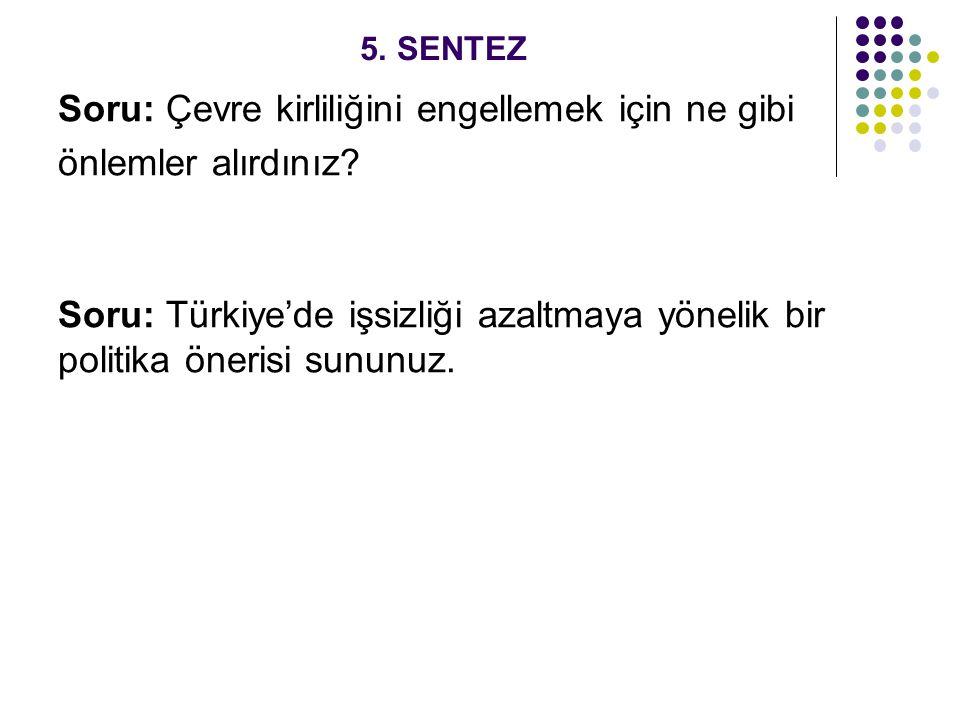 5. SENTEZ Soru: Çevre kirliliğini engellemek için ne gibi önlemler alırdınız? Soru: Türkiye'de işsizliği azaltmaya yönelik bir politika önerisi sununu