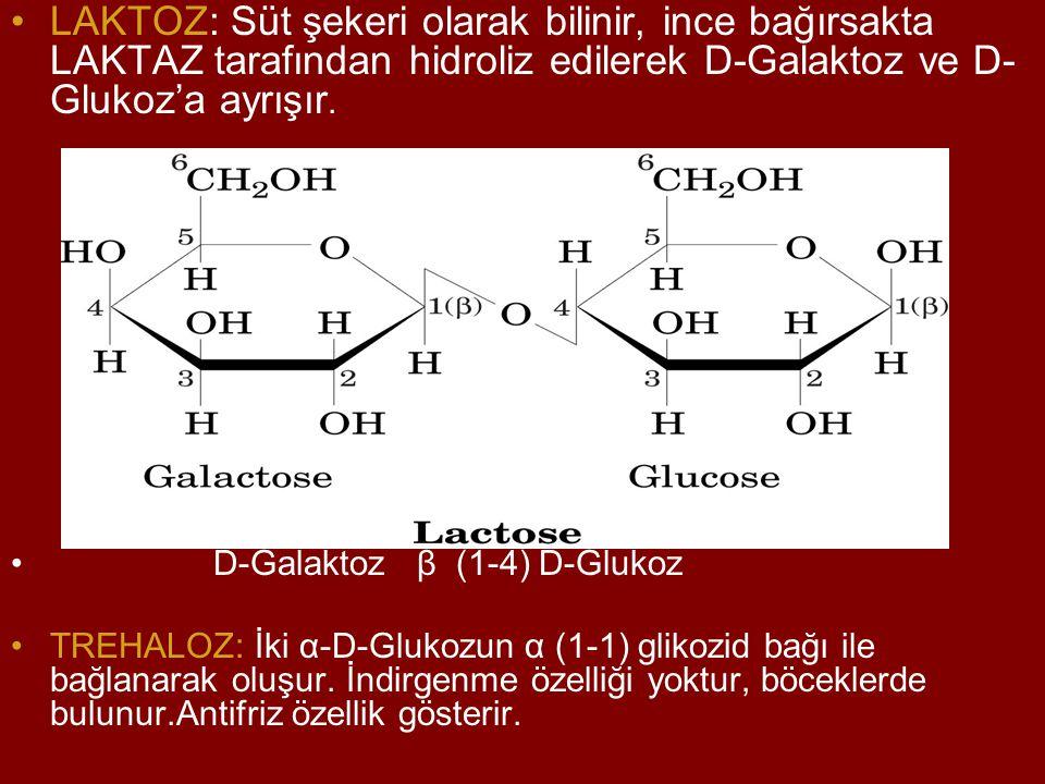 LAKTOZ: Süt şekeri olarak bilinir, ince bağırsakta LAKTAZ tarafından hidroliz edilerek D-Galaktoz ve D- Glukoz'a ayrışır. D-Galaktoz β (1-4) D-Glukoz