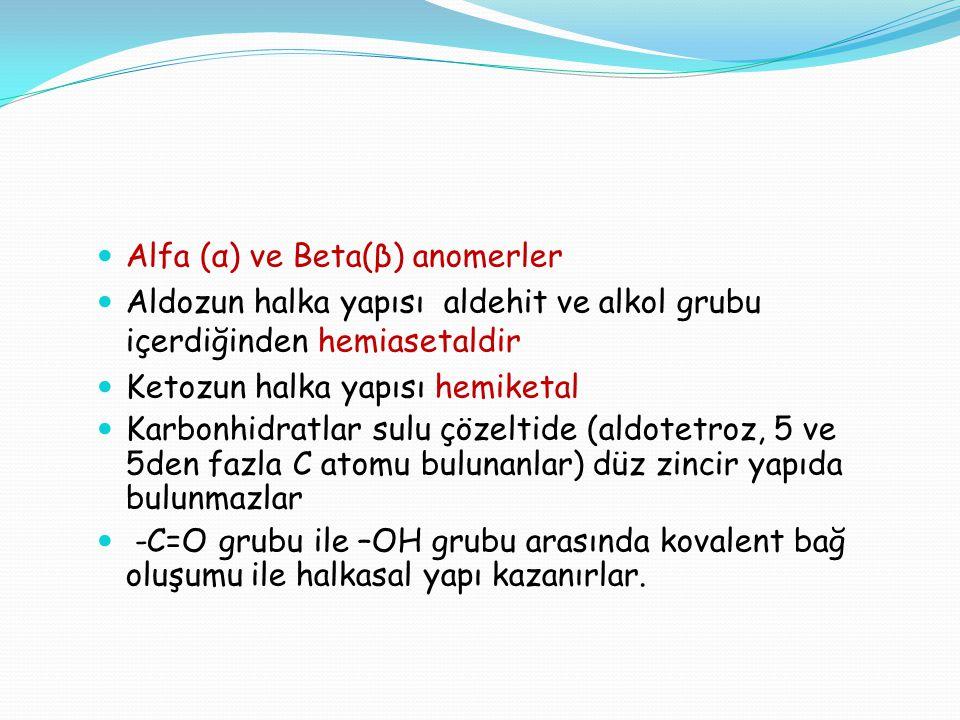 Alfa (α) ve Beta(β) anomerler Aldozun halka yapısı aldehit ve alkol grubu içerdiğinden hemiasetaldir Ketozun halka yapısı hemiketal Karbonhidratlar su