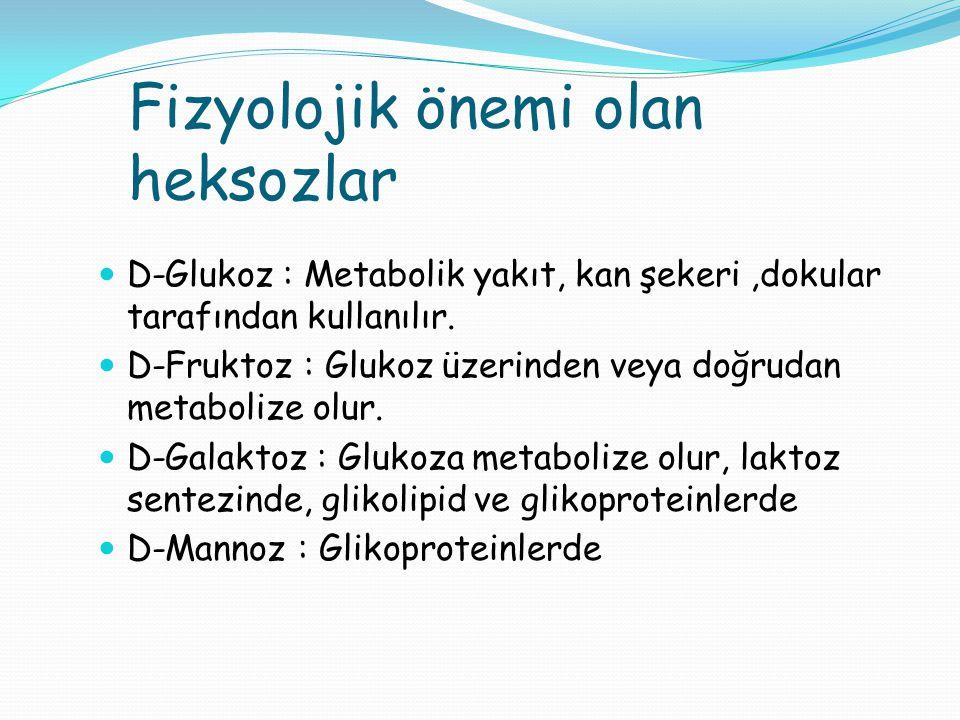 Fizyolojik önemi olan heksozlar D-Glukoz : Metabolik yakıt, kan şekeri,dokular tarafından kullanılır. D-Fruktoz : Glukoz üzerinden veya doğrudan metab