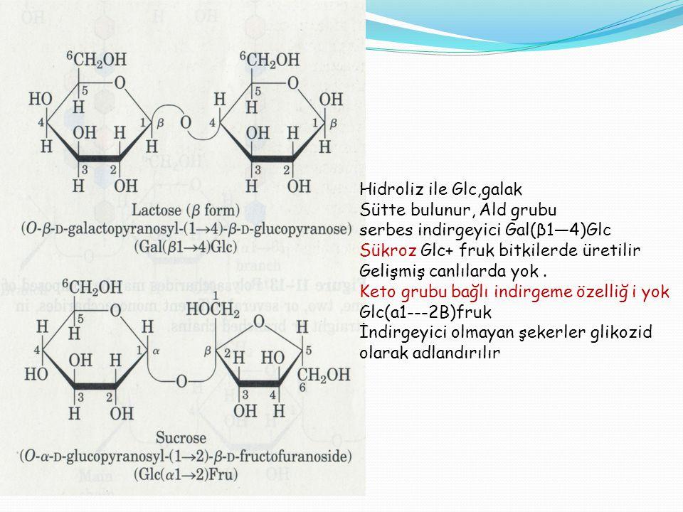 Hidroliz ile Glc,galak Sütte bulunur, Ald grubu serbes indirgeyici Gal(β1—4)Glc Sükroz Glc+ fruk bitkilerde üretilir Gelişmiş canlılarda yok. Keto gru