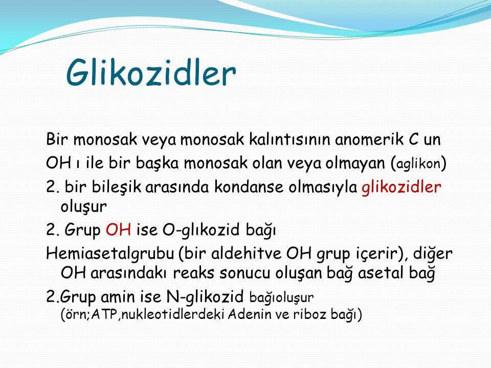 Glikozidler Bir monosak veya monosak kalıntısının anomerik C un OH ı ile bir başka monosak olan veya olmayan ( aglikon ) 2. bir bileşik arasında konda