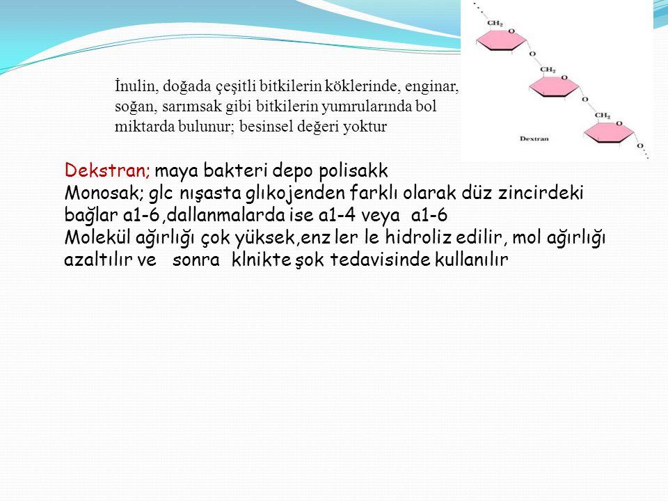 Dekstran; maya bakteri depo polisakk Monosak; glc nışasta glıkojenden farklı olarak düz zincirdeki bağlar a1-6,dallanmalarda ise a1-4 veya a1-6 Molekü