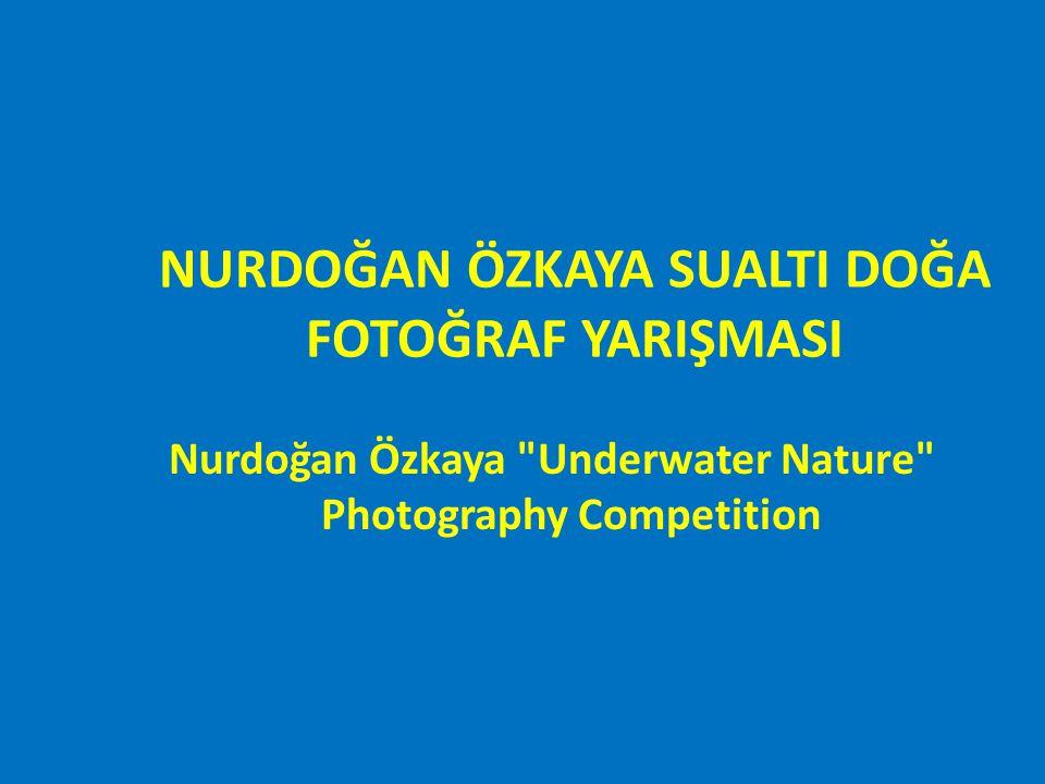 NURDOĞAN ÖZKAYA SUALTI DOĞA FOTOĞRAF YARIŞMASI ÜÇÜNCÜLÜK ÖDÜLÜ Nurdogan Özkaya Underwater Nature Photography Competition THIRD PLACE